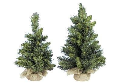 Dennenboom 60cm