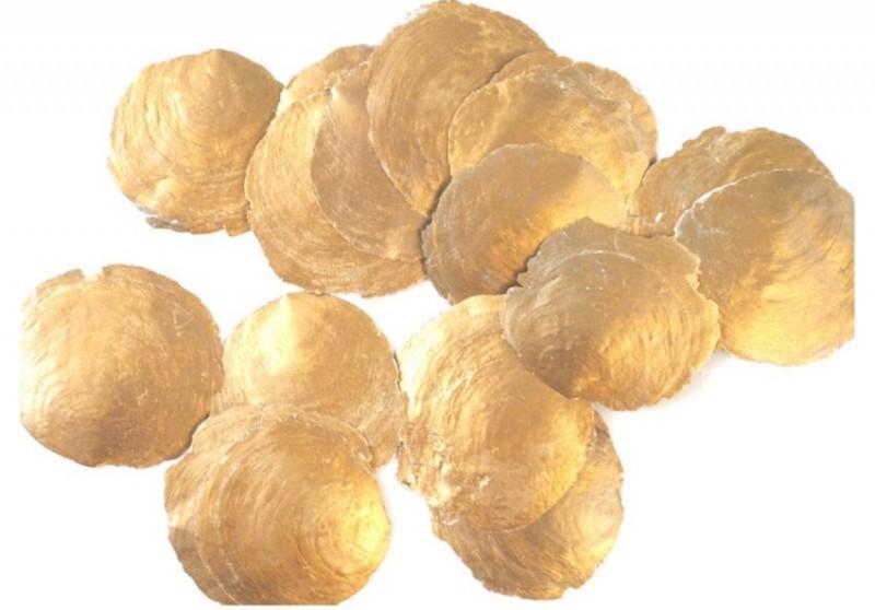 Camarschelp goud
