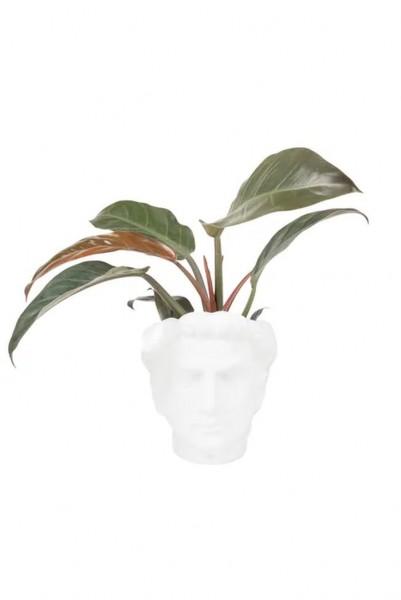 Zusss bloempot hoofd man keramiek wit