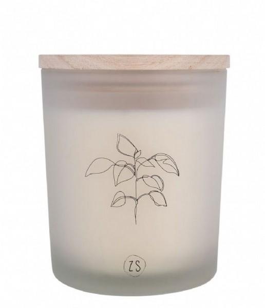 Zusss geurkaars in glas plant wit
